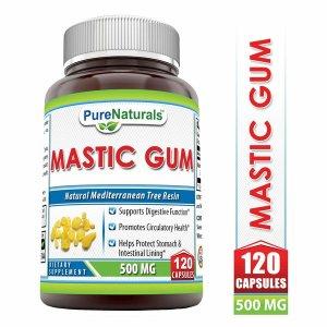 Pure Naturals 매스틱 검 소화 기능 건강 식품 120캡슐