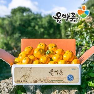 꿀당도 조생감귤 5kg 10kg /프리미엄감귤 본격 수확