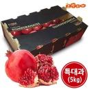 (생과일) 석류 미국산 10-11과 랜덤 (5kg) 1박스 특대
