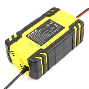 Foxsur 자동 스마트 배터리 충전기 펄스 수리 충전기
