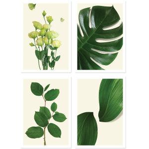 식물 B 포스터 4P 세트 / 인테리어그림 액자 사진