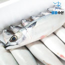생 고등어 제주 손질생물고등어 중2kg(손질후1.6) 6미