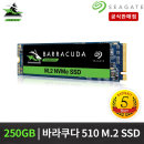 BarraCuda 510 M.2 NVMe SSD 250G 5년 ZP500CM3A001