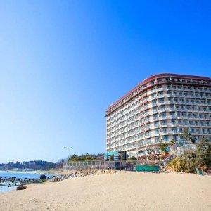 |호텔위크|금강산 콘도(강원 호텔/고성/양양/동해/삼척)