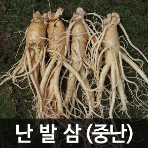 금산인삼 수삼(난발삼) 중난 (750g) (13~15뿌리)