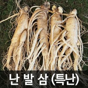 금산인삼 수삼(난발삼) 특난 (750g) (7~8뿌리)