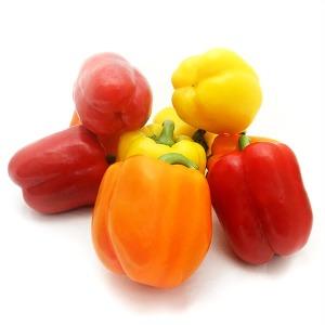당일 수확 삼색 파프리카 3kg(특품)