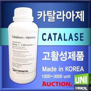 카탈라아제 Catalase 카탈레이스 카탈라제