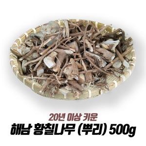 해남 황칠나무 (뿌리) 500g /20년 이상재배/최상품