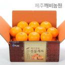 (깨비농원) 특고당도 천혜향 4.5kg 대과(선물추천)