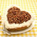 힐링펫 강아지케이크 소고기 CAKE 애견케익피자모음전