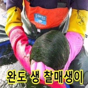 새벽채취 진공매생이 한재기 370g~400g 5 /10재기