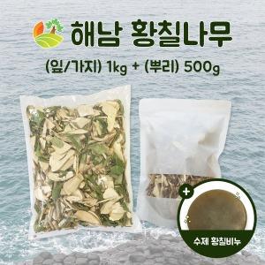 해남 황칠나무 (잎/가지) 1kg +(뿌리) 500g +황칠비누