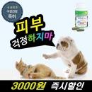 피부입냄새치석제거헬로플라그스킨케어 캡슐 개고양이