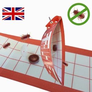 영국 드라이플라워 권연벌레 전용 종합 페로몬 트랩