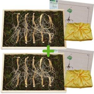 아리산삼 6년근 10뿌리 2세트 장뇌삼 산양삼 산양산삼