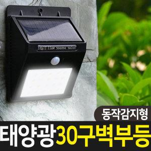태양광 태양열 야외등 LED 센서등 벽부등 30구(감지형)