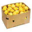 생레몬 팬시 레몬 140개 17kg 1박스