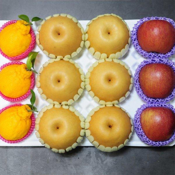 과일꾼 과일선물세트 한라봉 + 배 + 사과 363세트 5kg