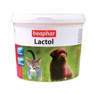 애견사료 락톨 분유 250g 애완용품 애견용품