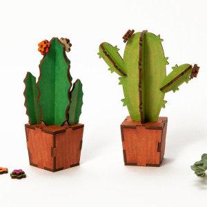 선인장 만들기 / 나무꾸미기 만들기재료 반려식물