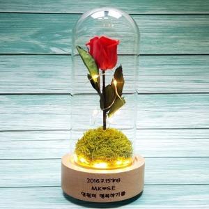 오르골 프리저브드 드라이플라워 시들지 않는 꽃 선물