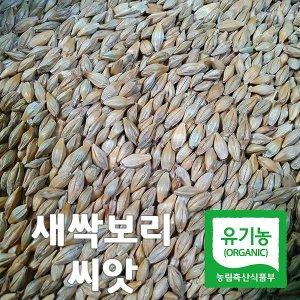 산들바람 새싹보리 씨앗(겉보리) 1kg 유기농 키우는법
