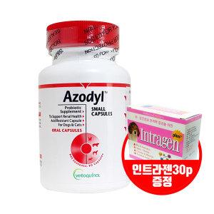 베토퀴놀 아조딜 90캡슐(아이스팩포장) +인트라젠 30p