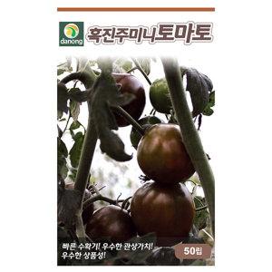 흑진주미니토마토 씨앗 50립 채소 종자