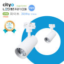 NEW LED 렌즈투광기 COB 30W형 화이트 주광색/모음전