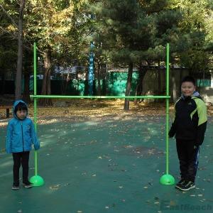 프로맥스 림보 학교 체육 이벤트 행사 워크샵 용품
