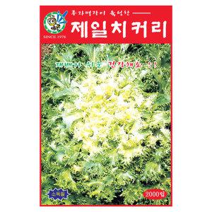 한누리팜마트/제일종묘/치커리 1500립
