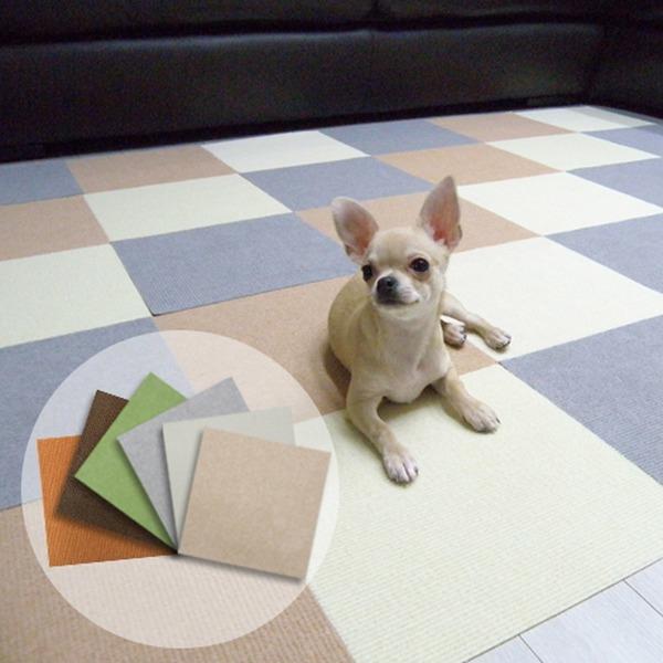 애견매트 강아지매트 애견미끄럼방지매트 6종