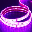12V 튜브 5050 3칩 LED바 흰띠 핑크 10cm당 연결발송