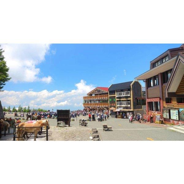 일본 후지산+하코네 일일 투어(도쿄 출발)