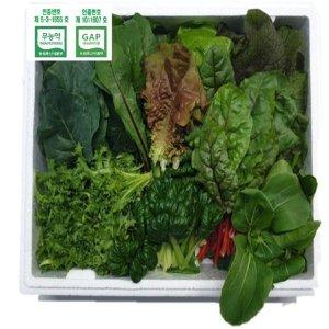무농약 수경재배 모듬쌈채소(500g)