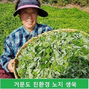 생쑥 친환경 거문도 생쑥 4kg(나물용)