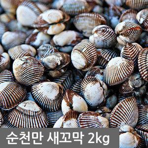 당일채취 무료배송  벌교새꼬막 2kg