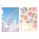 2020 1-2 초등노트 일기장 넓은칸 (여자) (10권)