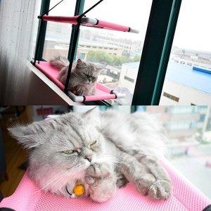 신형 2단 매쉬 통풍 창문 캣타워 윈도우 고양이해먹