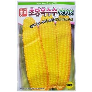 초당옥수수 씨앗 VSC03 100립 생식용 스위트콘 옥수수