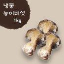 자연아름 혈관을 맑게 해주는 능이버섯(냉동) 1kg 능