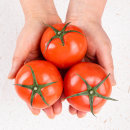 토마토 正品 5kg 소과 5~6번과