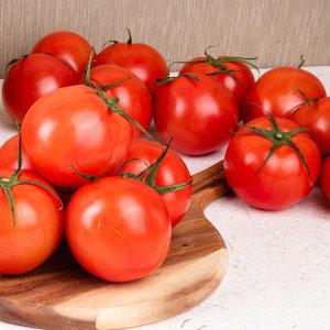 토마토 正品 대용량 10kg 소과 5~6번과
