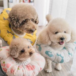 강아지 고양이 넥카라 깔대기 목보호대 상처 보호쿠션