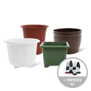 마이플랜트 플라스틱 화분 화분받침대 세트