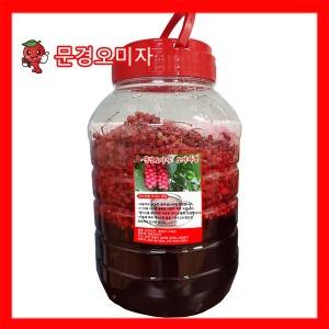2019년산 문경생오미자청10kg(오미자5kg+설탕5kg)