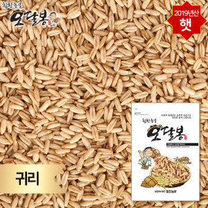 귀리 귀리쌀 오트밀 통귀리 캐나다산 1kg 2019년 햇