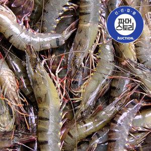 (비비수산) 말레이시아산 블랙타이거새우 500g(12미)