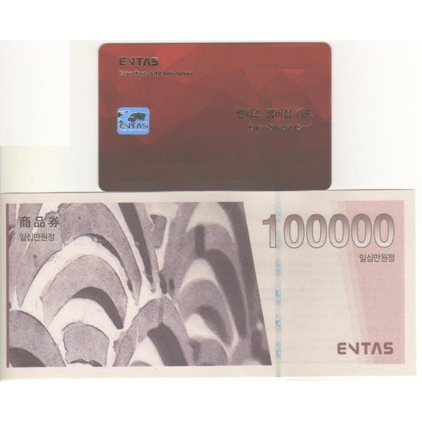 엔타스상품권 10만원권(경복궁/삿뽀로 등)(카드/지류)